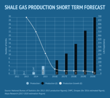 Shale Gas Production