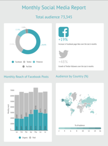 Monthly Social Media Report